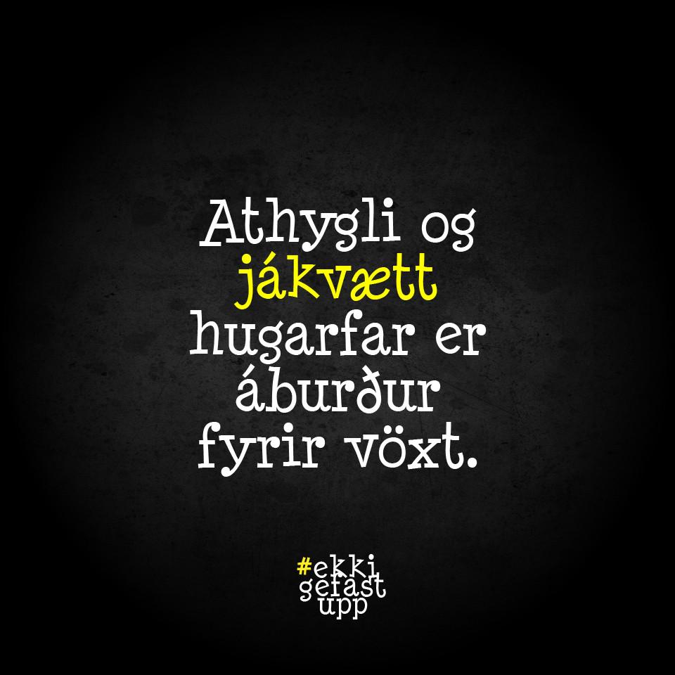 Athygli og jákvætt hugarfar er áburður fyrir vöxt.