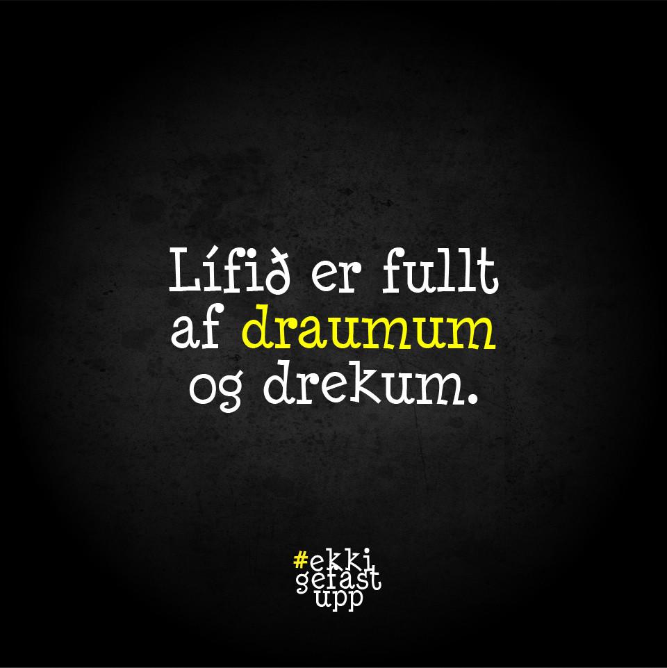 Lífið er fullt af draumum og drekum.