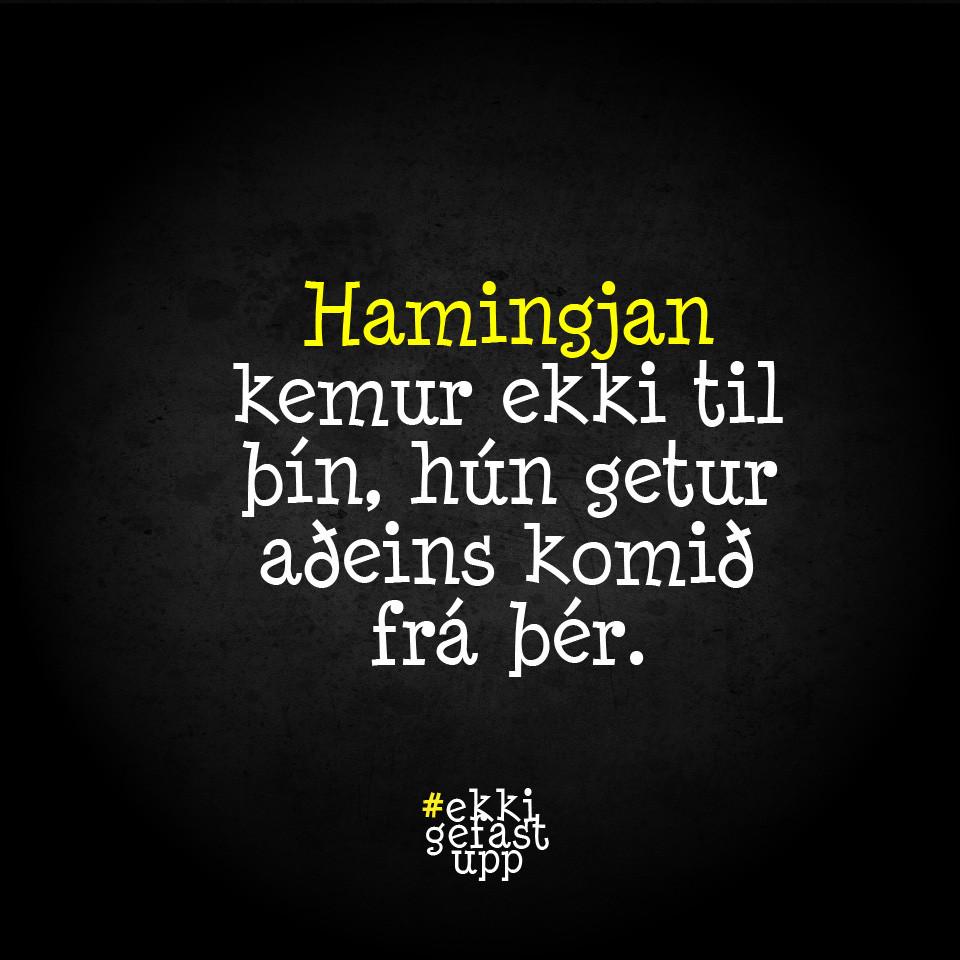 Hamingjan kemur ekki til þín, hún getur aðeins komið frá þér.