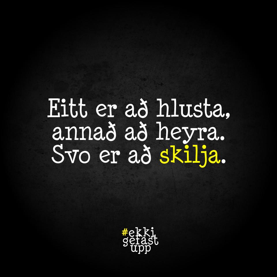 Eitt er að hlusta, annað að heyra. Svo er að skilja.