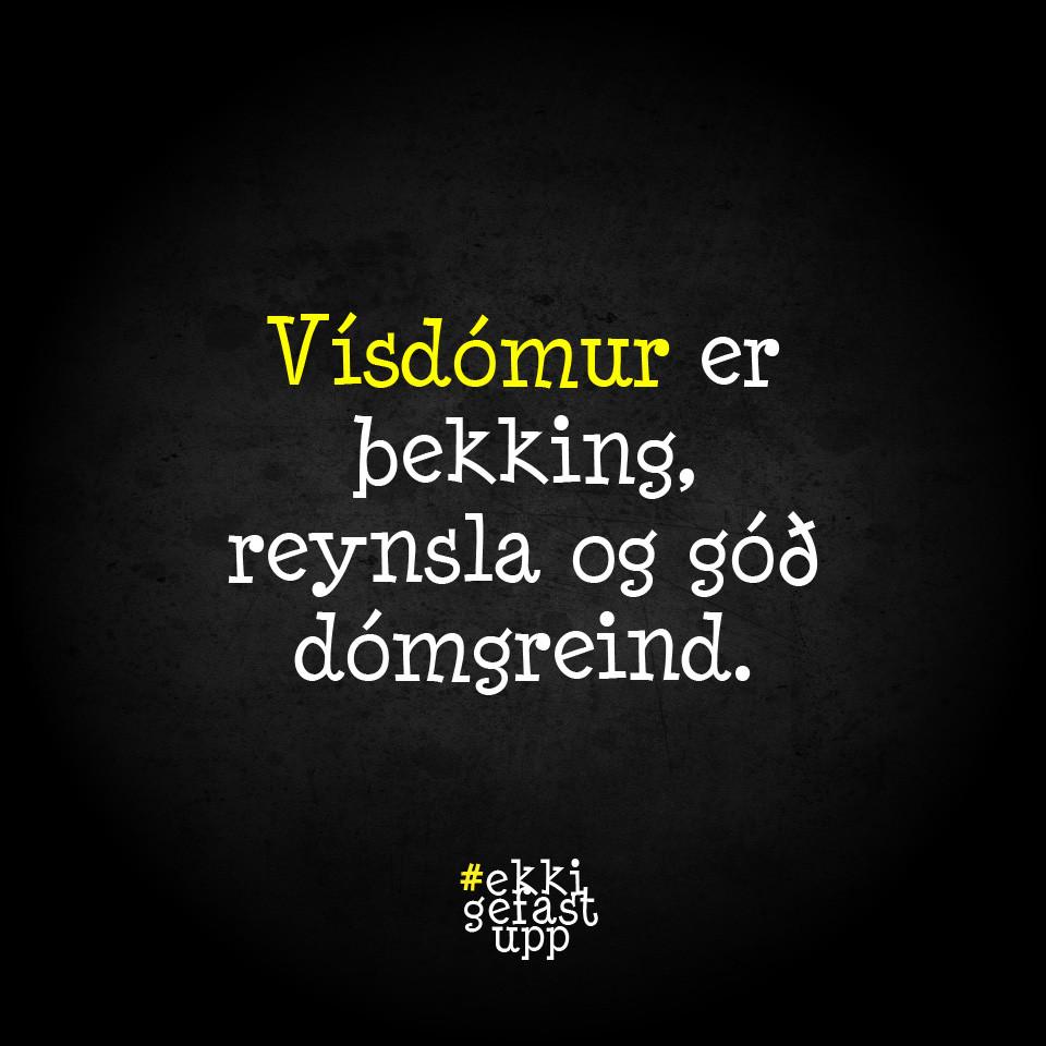 Vísdómur er þekking, reynsla og góð dómgreind.
