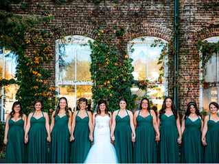 Vendor Spotlight – Wild Wonder Photography