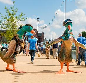 puddle ducks.jpg