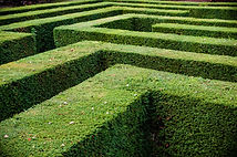Grass lawn cut into a maze like puzzle p