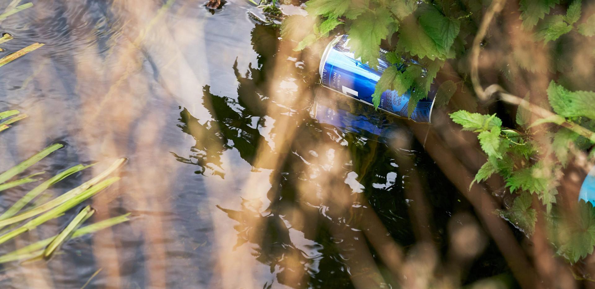 River_Colne_SJ_078.jpg