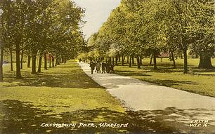 Cassiobury Park - Lime Avenue - c.1955 -