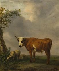 Kobell, Jan II