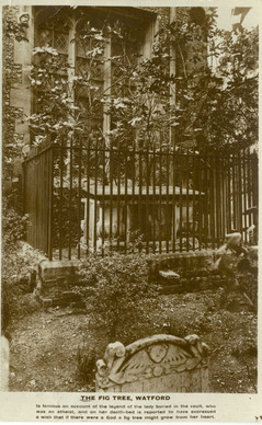 Fig Tree Tomb, St Mary's Churchyard