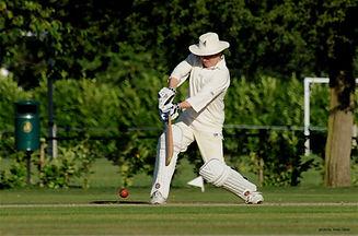 Cricket (1).jpg