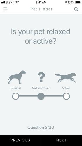 Pet Quiz 2.png