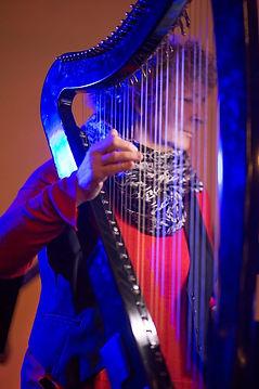 Carol at harp 3.24.17.jpg