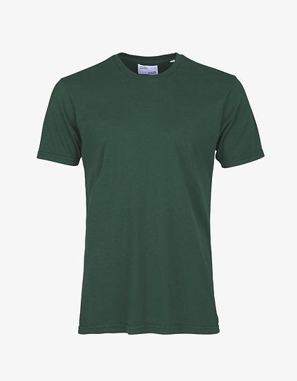 T-shirt EMERALD GREEN - COLORFUL STANDARD