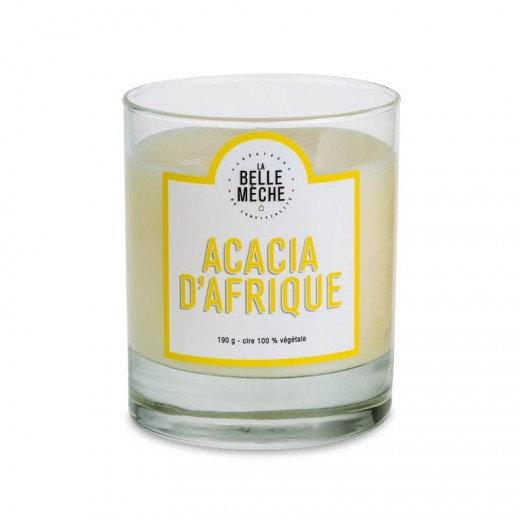 Bougie Acacia d'Afrique - La Belle Mèche