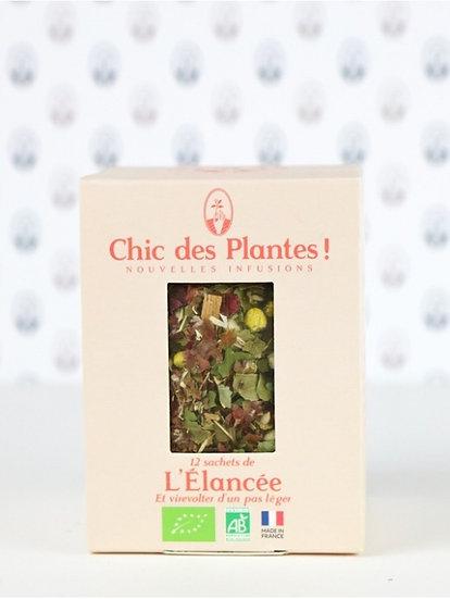 Infusion L'élancée - Chic des Plantes
