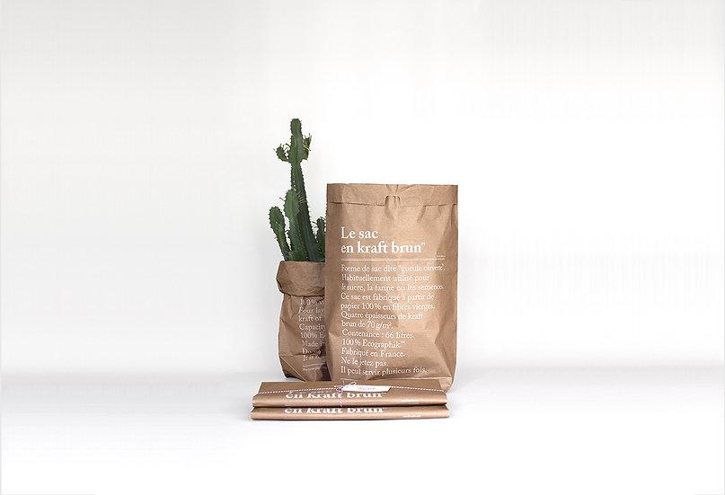 Sac en papier Kraft brun - Be Poles