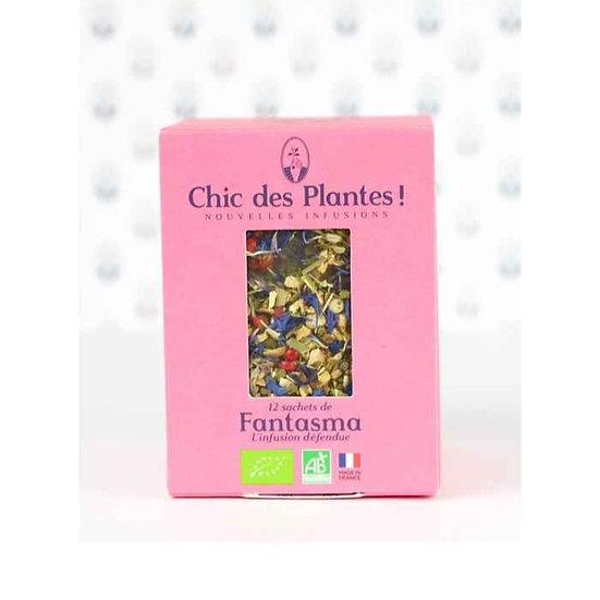 Infusion Gingembre Citron FANTASMA - CHIC DES PLANTES