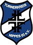 tknippes-handball-logo.png