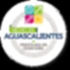 Hecho en Aguascalientes, Producto Local, Reconocimiento, Calidad Global