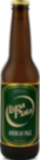 American Pale Ale.png