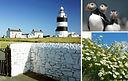 Hook Head, County Wexford. shb+fotolia.j