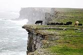 Aran Islands, Holiday Ireland 2 .jpg