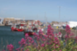Howth Harbour, Co Dublin, Holiday Irelan