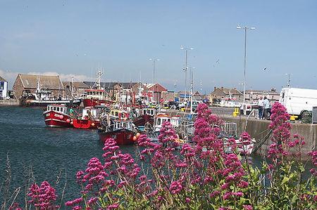 Howth Harbour, Co Dublin, Holiday Irelan