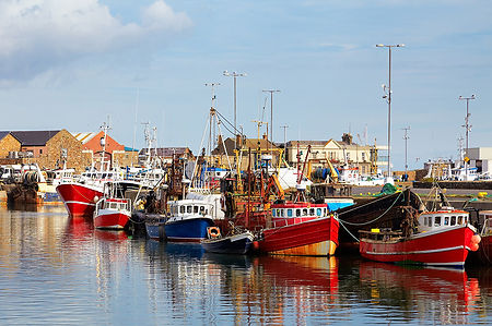 Fishing Boats, Howth Harbour, Co Dublin,