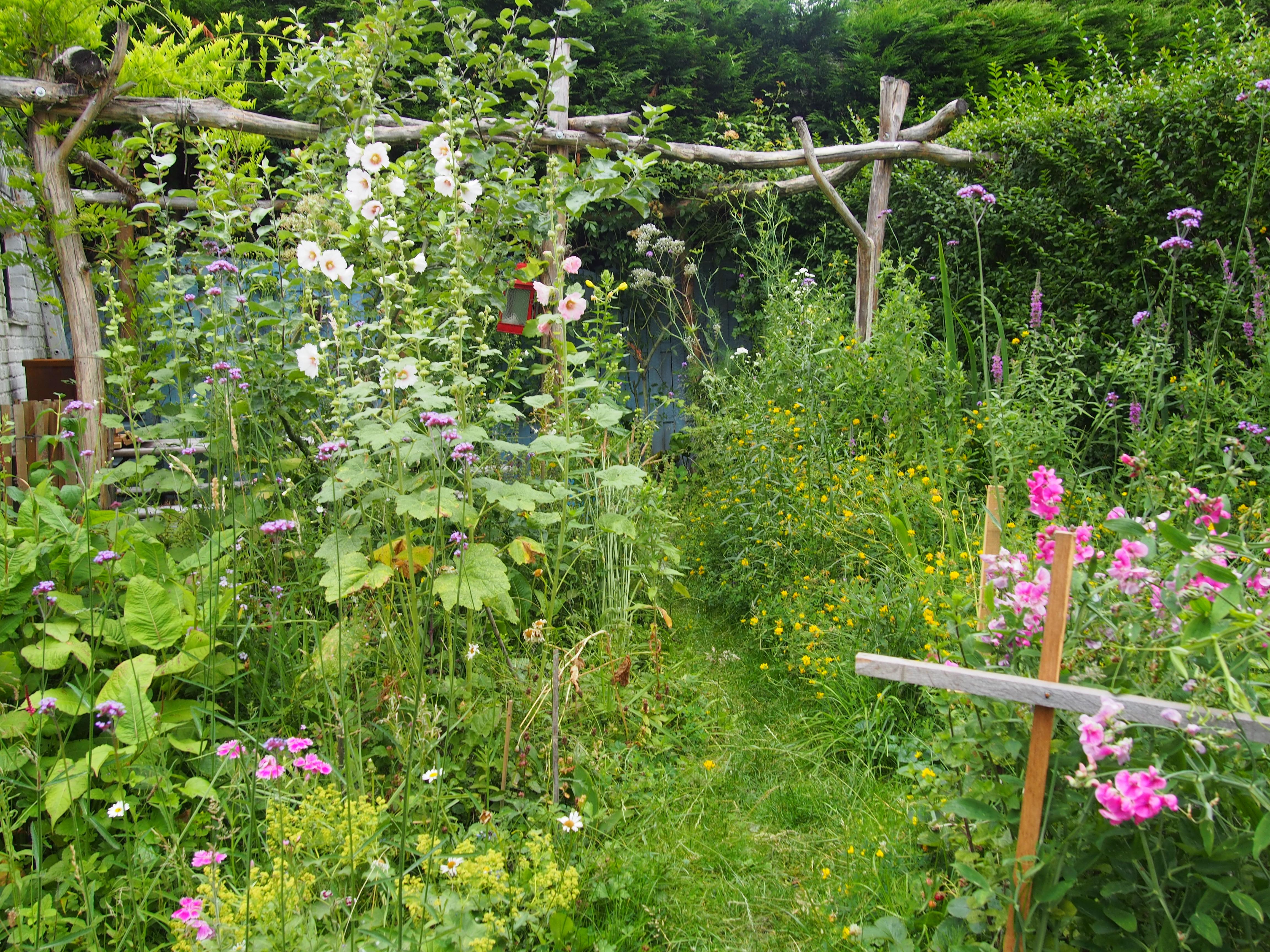 Particuliere wilde tuin