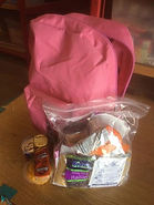 Pink Backpack.jpg