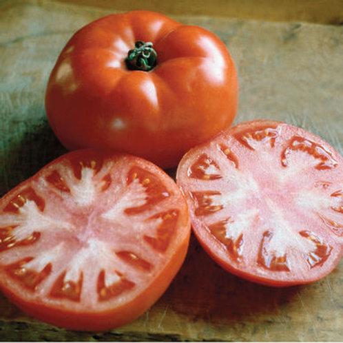 Heirloom Slicing Tomatoes - single
