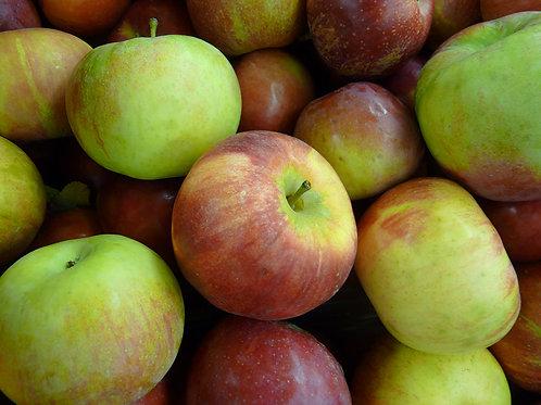 Cortland Apples - 5 lb bag