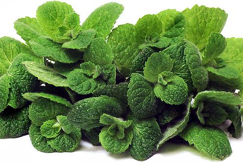 Organic Apple Mint - one bunch