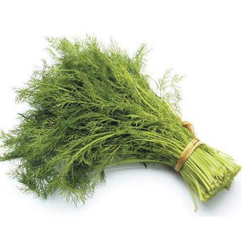 Fresh Dill - 1 bunch