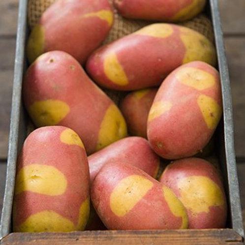 Pinto Gold Potatoes - 1 lb