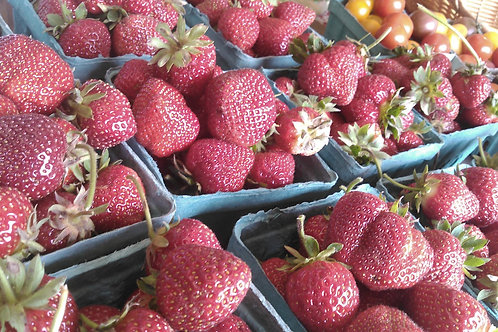 Organic Strawberries - 1 quart