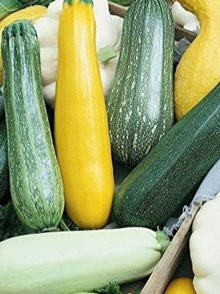 Zucchini/Squash Mix - 1 lb (1-2 pieces)