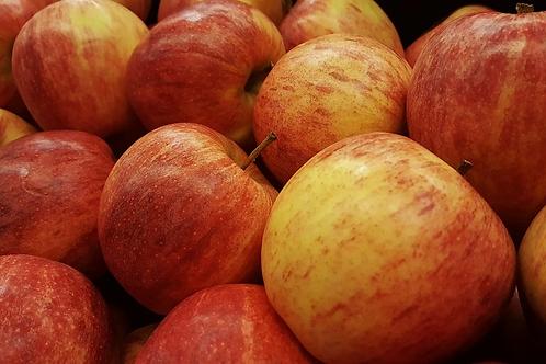 Gala Apples - 5 lb
