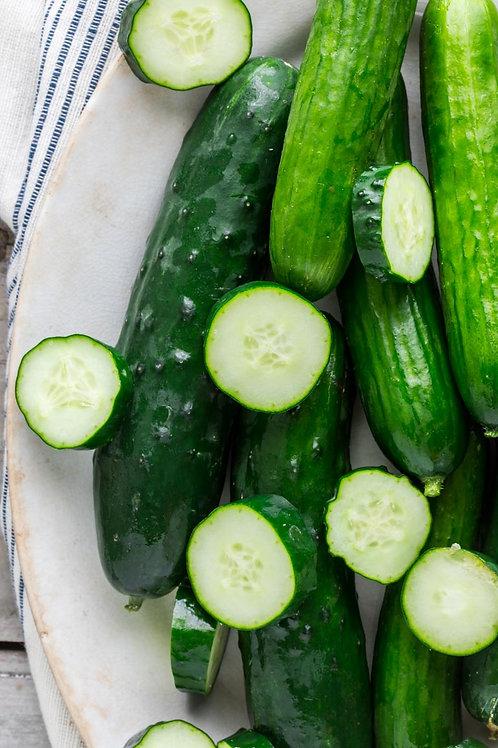 Organic Slicing Cucumbers - single