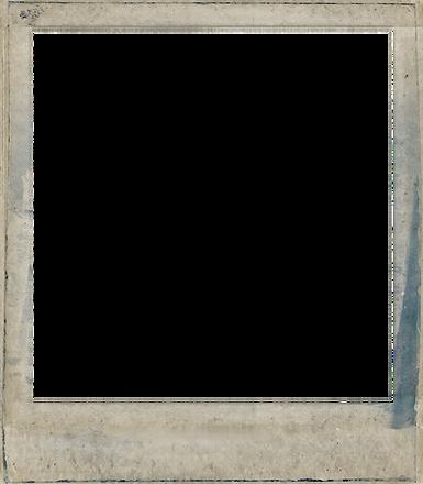 polaroid 2.png