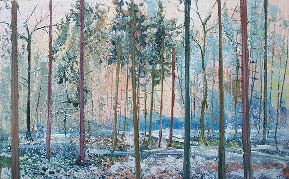 Gertjan Scholte-Albers (1971)