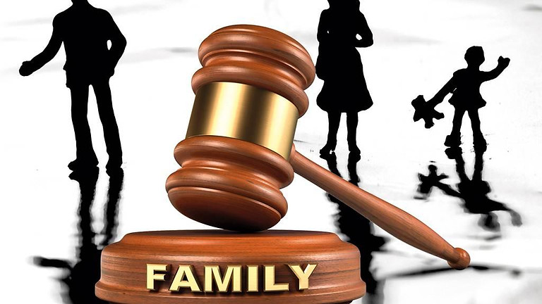 Family Court Workshop
