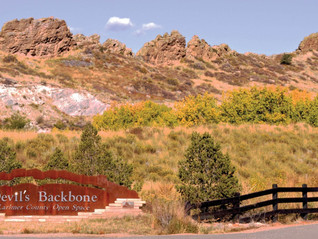 Zoom-Background-Devils-Backbone_1-scaled