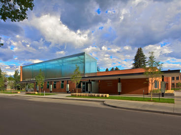 Carbondale Library