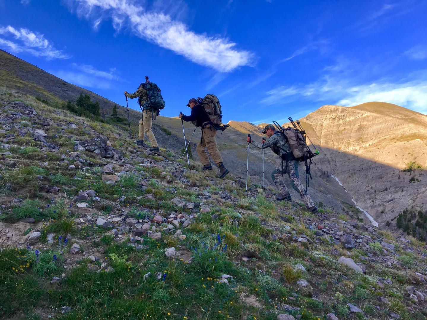 2019 Hiking.jpg