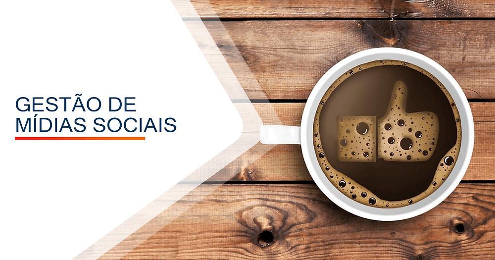 Gestão de Mídias Sociais em Porto Alegre - TF marketing Online