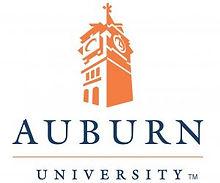 Auburn-University-300x249.jpg