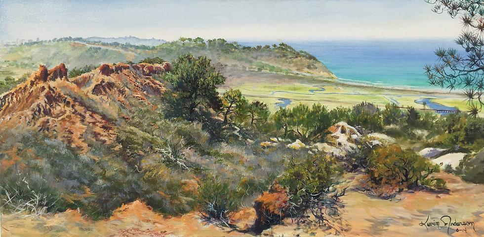 "Eastern View of Torrey Pines 24""x 48"""