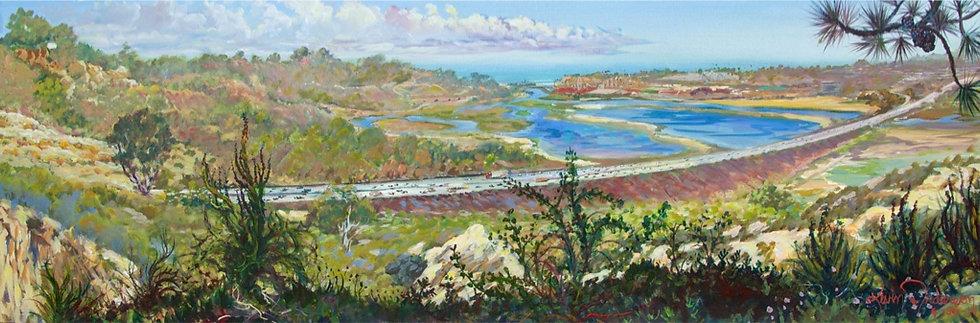 "San Dieguito River Valley 20""x 60"""