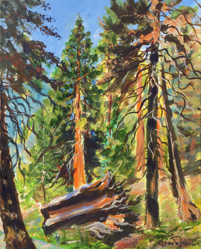 What a Wonderfull World!!     Sequoia Art Series now available
